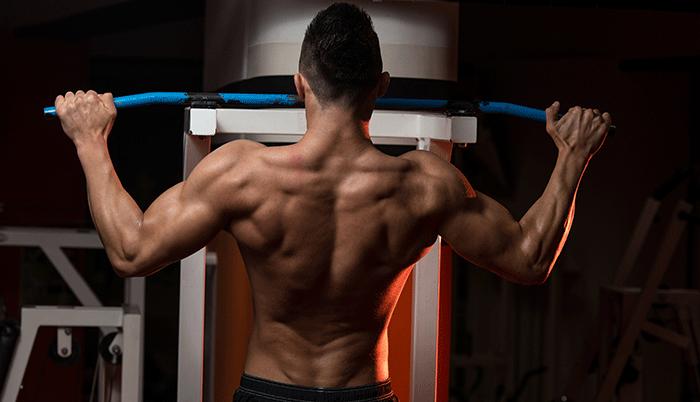 upper body training